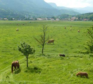 Blick vom Balkon Bio-Bauernhof Zacherlhof
