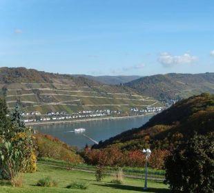 Das Grundstück und der Ausblick Ferienwohnung Schau Rhein