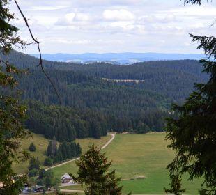 Beim Wandern tolle Aussichten Familotel Hotel Feldberger Hof