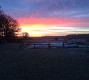 Morgendlicher Ausblick vom Landhaus in die Felder Familotel Landhaus Averbeck