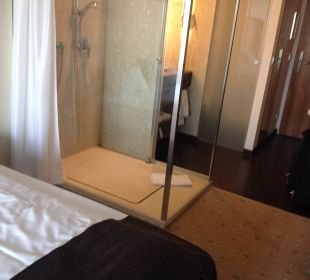 Ein gläserne Dusche Pullman Dresden Newa