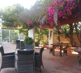 Außenbar Hotel Casa Pepe