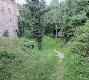 Weg zur Wolfsschlucht Hotel Schatz.Kammer Burg Kreuzen