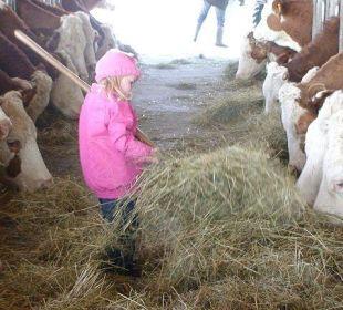 Stallarbeit macht Spaß Bauernhaus Zechnerhof