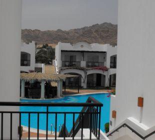 Blick auf den Pool Jaz Dahabeya