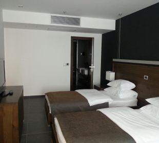 Schlafraum mit Fernsehr Hotel Avala