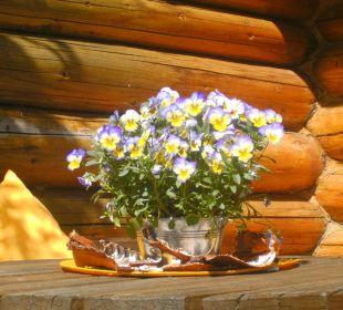 Garten Haus Bergwind