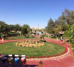 Garten Jungle Aqua Park