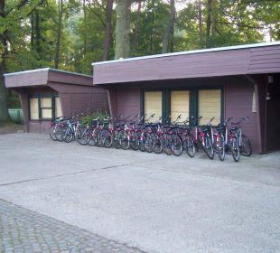 Fahrradverleih Hotel Forsthaus Damerow