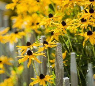Blumengarten Hotel Forster's Naturresort