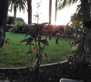 Garten Hotel Tigaiga