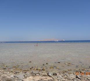 Morze? Melia Sharm Resort & Spa