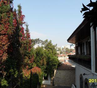 Blick vom Garten Aspen Hotel