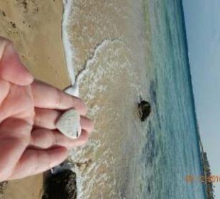 Herz-Fund am Strand Brayka Bay Resort