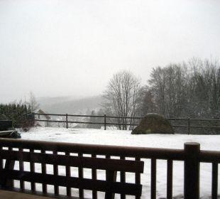 Gartenaussicht im Winter