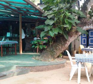 Übergang von der Terrasse zum Garten Hotel Susantha Garden