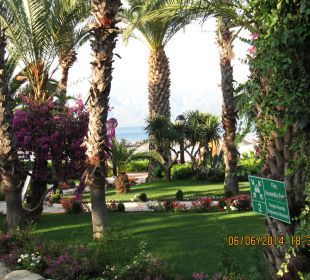 Alter schöner Baumbestand Hotel Aqua