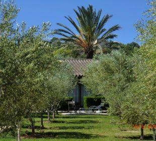 Impressionen vom Olivenhain Agroturismo S'Hort de Son Caulelles