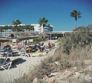 Pelican und Nissi Taverna Hotel Nissi Beach Resort
