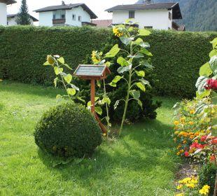 Vogelhaus+Blumen Gasthof Inntalerhof