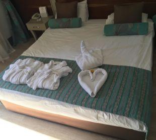 Mit viel Liebe gemacht Hotel Side Crown Palace