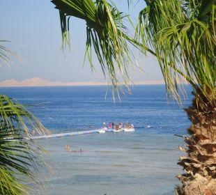 Zejście do rafy koralowej Melia Sharm Resort & Spa