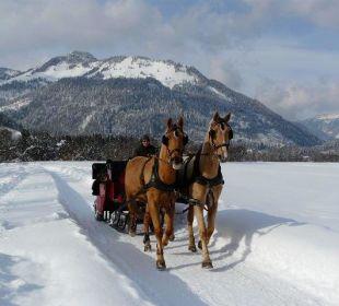 Romantische Schlittenfahrt im Winter Frühstückspension Hüttwirt