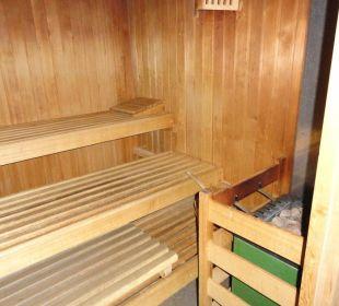 Finnische Sauna Glacier Hotel Grawand