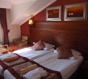Mein zimmer DG Hotel Alba Royal