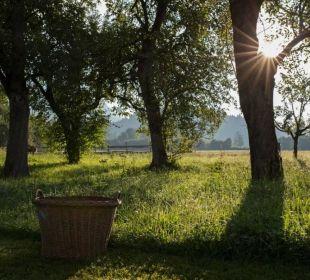 Ein Platz zum Entspannen.. Bauernhof Lindenhof
