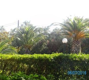 Blick von der Außenterasse  Hotel Livadi Nafsika