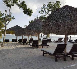 Strandabschnitt Preferred Club Adults Only Dreams La Romana Resort & Spa