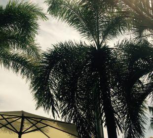 Gartenanlage Thai Garden Resort