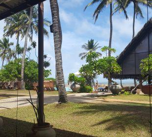 Gartenanlage Hotel Ranweli Holiday Village