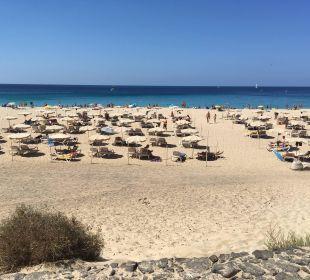 Strand mit Liegen ca. 300m entfernt Sensimar Calypso Resort & Spa