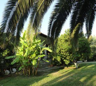 Zieleń Hanioti Village Hotel