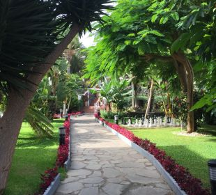 Gartenanlage Hotel Riu Garoe