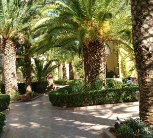 Garten Vantaris Beach Hotel
