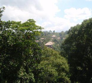 Anlage vom andere Bergseite gesehen Hotel Nandini Bali Jungle Resort & Spa