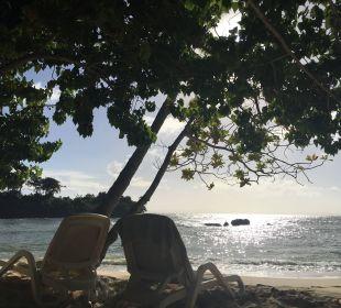 Nur für Hotelgäste Luxury Bahia Principe Cayo Levantado Don Pablo Collection