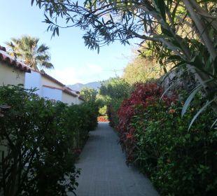 Fussweg zu unserem Bungalow Hotel La Palma Jardin