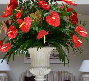 Immer frische Blumen Hotel Riu Garoe
