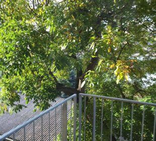 Balkon Amedia Luxury Suites Graz