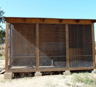 Komfortable Unterkunft für die Hotelkatzen Hotel Horizon Beach Resort