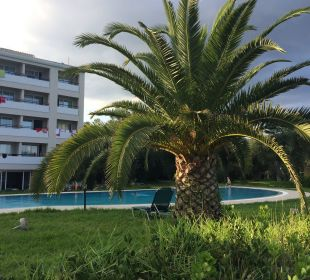 Chlorwasser Pool mit Hotel dahinter Hotel Elea Beach