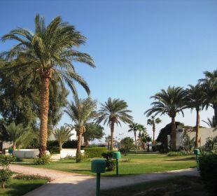Jeder Winkel wunderschn Hotel Shams Safaga
