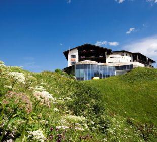 Sommerwiese am Goldenen Berg! Hotel Goldener Berg
