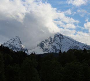 Ausblick vom Zimmer  Alm- & Wellnesshotel Alpenhof