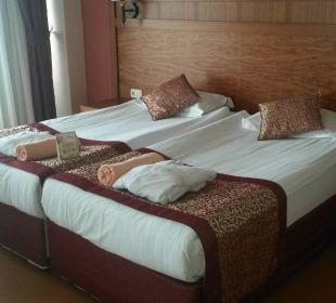 Bett Hotel Alba Royal