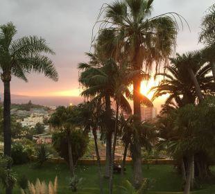 Blick vom Barsalon auf den Garten Hotel Tigaiga